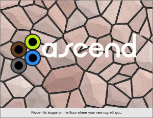 Ascend Rugs Ipad App