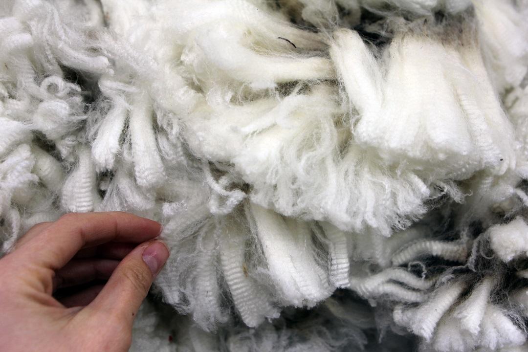 Merino Wool Rugs Ascend